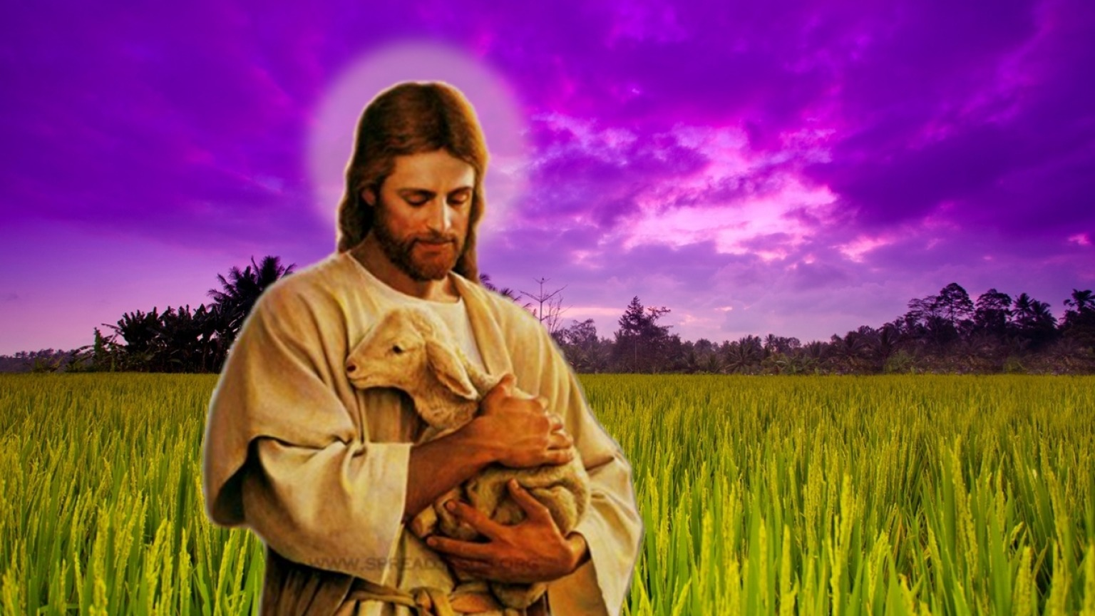 jesus christ wallpaper sized images pic set 13 - HD 1536×864