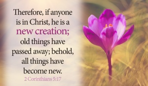 31115-cm-anyone-christ-new-creation-social_png