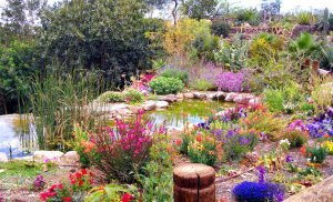 israel-eilat-botanical-gardens